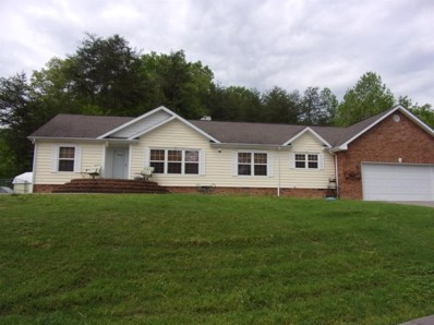 225 Valley View Drive, Coldiron, KY 40819 - #: 1909643