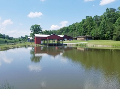685 Toombs Hollow Road, Hustonville, KY 40437 - #: 1911192