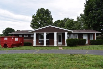 350 State Route 3117, South Shore, KY 41175 - #: 1913578