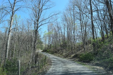 681 Mud Cut Road, Pine Knot, KY 42653 - #: 1920538