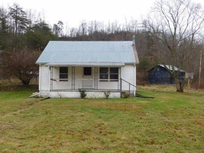 17 Judd Road, Booneville, KY 41314 - #: 1928021