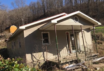 974 Ham Hollow Road, Manchester, KY 40941 - #: 20004304