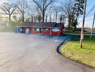 2682 E Highway 2792, Pine Knot, KY 42635 - #: 20004424