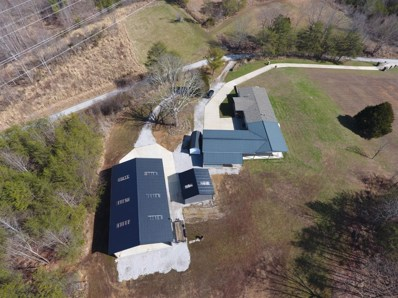 769 Swan Lake Rd, Barbourville, KY 40906 - #: 20004481