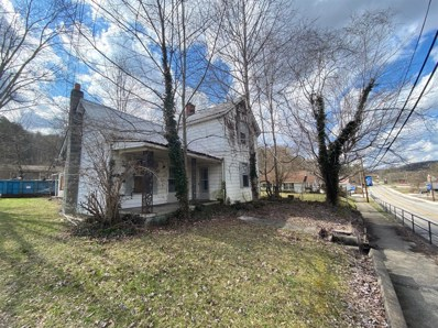 317 Main Street, Livingston, KY 40445 - #: 20004754