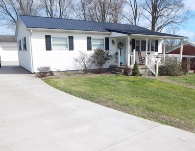 1119 Crestwood Court, Flatwoods, KY 41139 - #: 20006356