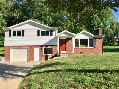 195 Mayfield, South Shore, KY 41175 - #: 20012789