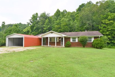 3718 755 Highway, Sandy Hook, KY 41171 - #: 20014544