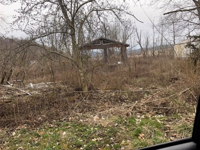 389 Old Us 60 West, Morehead, KY 40351 - #: 20014931