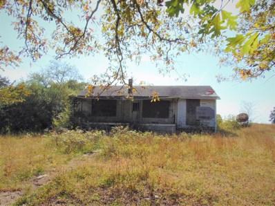 215 Muddy Creek Road, Pine Knot, KY 42635 - #: 20022051