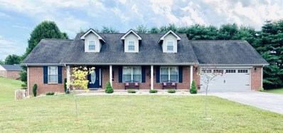 313 Mountain View Drive, Somerset, KY 42501 - #: 20101472
