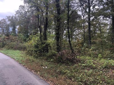 1111 State Hwy 700 Tract #1, Whitley City, KY 42653 - #: 20123000