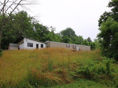 2625 Holts Creek Road, Foster, KY 41043 - #: 456735
