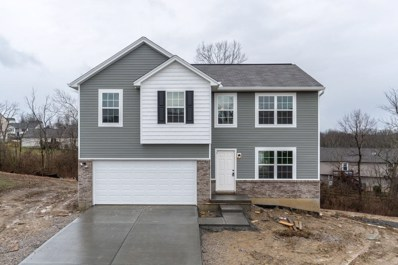 10315 Emancipation Place, Independence, KY 41051 - #: 516356