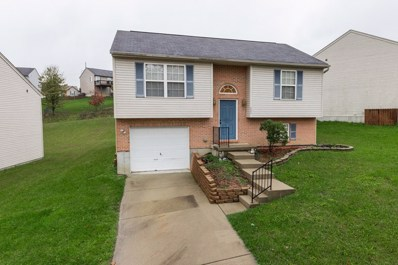 623 Tupelo Drive, Independence, KY 41051 - #: 521737