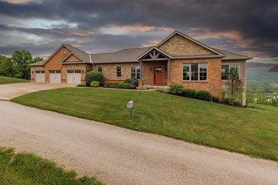 351 Cherry Blossom Point, Foster, KY 41043 - #: 549398