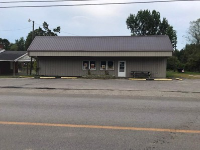 4821 W St. Rt. 70, Central City, KY 42330 - #: 20183293
