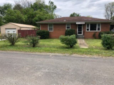 35 Turner Road, Dundee, KY 42338 - #: 20201821
