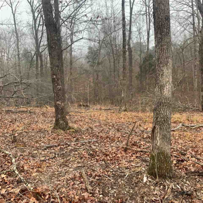00 Terry Coal Road 98 Acres, Crofton, KY 42217 - #: 20210543