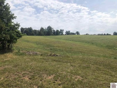 Pebble Creek Dr., Madisonville, KY 42431 - #: 100621