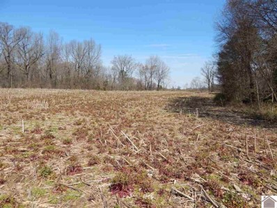 000 State Route 1529 E, Water Valley, KY 42085 - #: 101769