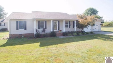 700 State Route 80 West, Arlington, KY 42021 - #: 102193