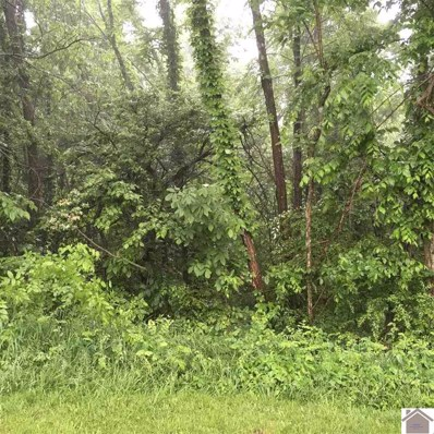 00 Blue Ridge Rd Lot 30 And 31, Smithland, KY 42081 - #: 104309