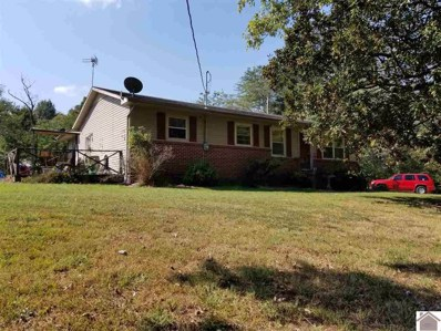 10157 State Route 94 W, Water Valley, KY 42085 - #: 104895