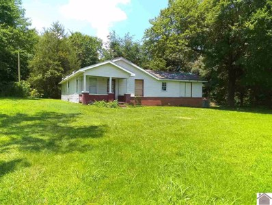 499 Kingston Rd, Water Valley, KY 42085 - #: 108371