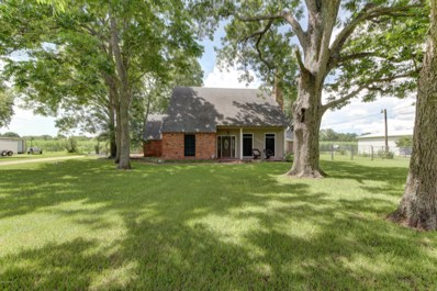 1097 Lady Of The Lake Road, St. Martinville, LA 70582 - #: 17006785