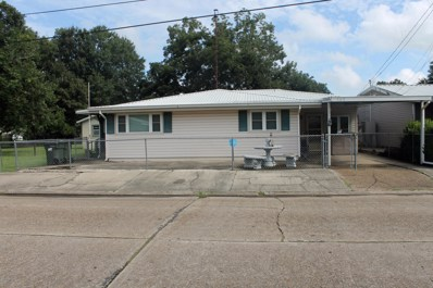 163 S Richelieu Circle, New Iberia, LA 70560 - #: 18009531