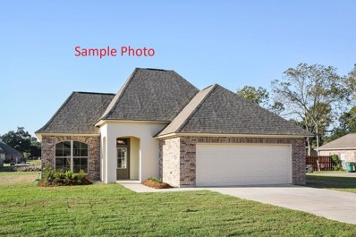 35 Bamboo Drive, Breaux Bridge, LA 70517 - #: 18010735