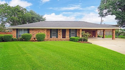 501 Cheyenne Circle, Scott, LA 70583 - #: 19008812