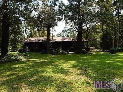 10550 Florida Blvd, Walker, LA 70785 - #: 2018006107