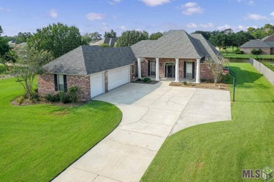 38258 Lakeview Ct, Prairieville, LA 70769 - #: 2019012192