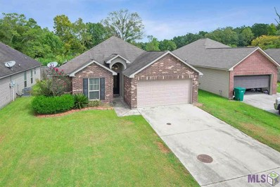 11589 Mary Lee Dr, Denham Springs, LA 70726 - #: 2019016357