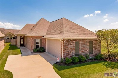 6713 Chanango Dr, Addis, LA 70710 - #: 2019016840