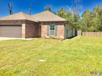 11617 Mary Lee Dr, Denham Springs, LA 70726 - #: 2019017769