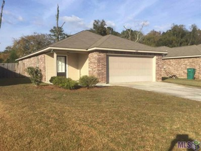11609 Mary Lee Dr, Denham Springs, LA 70726 - #: 2019018802
