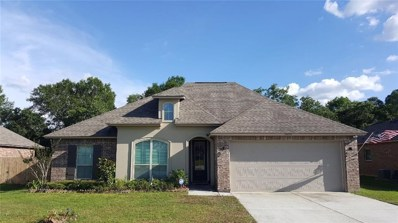 24072 Spanish Oak Avenue, Ponchatoula, LA 70454 - #: 2210243