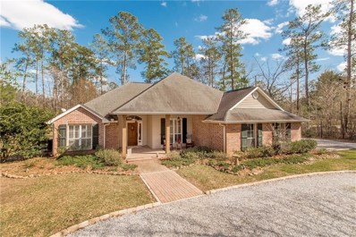 46498 Chemekette Road, Robert, LA 70455 - #: 2240268
