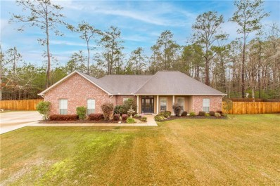 27669 Ivy Springs Drive, Independence, LA 70443 - #: 2287599