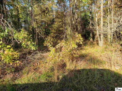 Lot 24 Carey Smith Road, Mangham, LA 71259 - #: 195371
