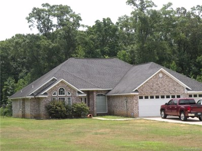 1750 Black Lake Road, Gibsland, LA 71028 - #: 228170