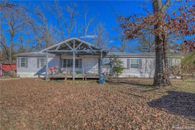 225 Lee Road, Plain Dealing, LA 71064 - #: 248636