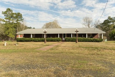 4568 Howard Road, Starks, LA 70661 - #: 173175