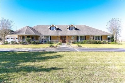 282 Community Center Road, Lacassine, LA 70650 - #: 185459