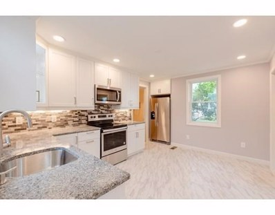 20 Chester Street UNIT 1, Watertown, MA 02472 - #: 72399539