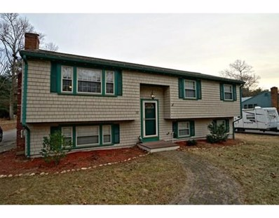 13 Lamplighters Ln, Plymouth, MA 02360 - #: 72438713