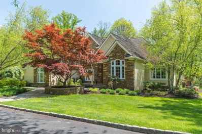 6206 Greenhill Road, New Hope, PA 18938 - #: 1000176642
